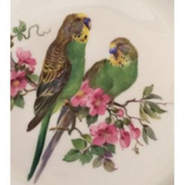 Close up of the fine painting on one of the twelve Meissen bird plates shown in previous picture. Sold
